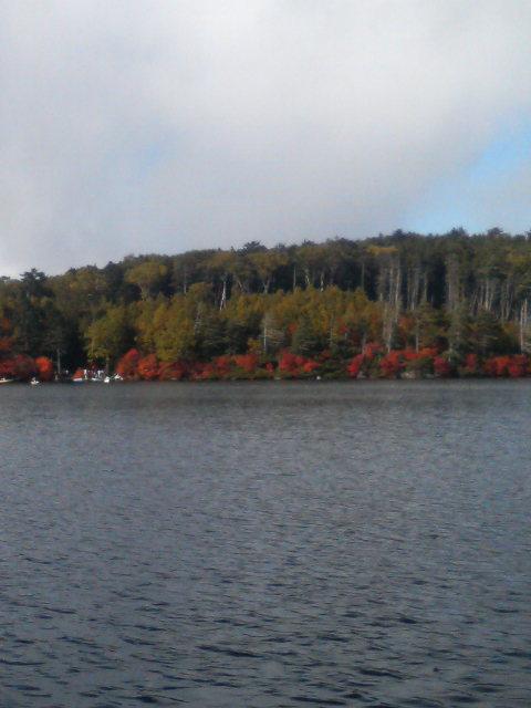 紅葉の白駒池