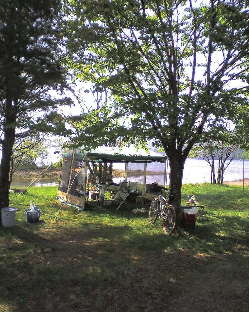 素晴らしいキャンプ場